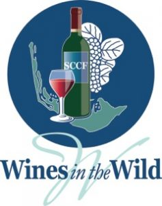 Wines in the Wine Logo